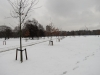 Nevada en Londres - Hyde Park